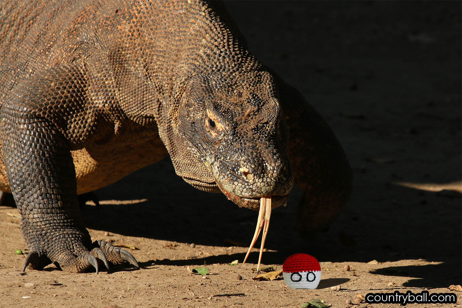 Komodo Dragon tasting Indonesiaball