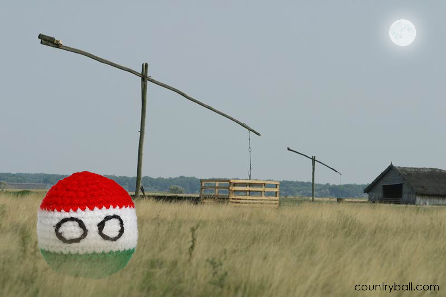 Hungaryball on the Puszta