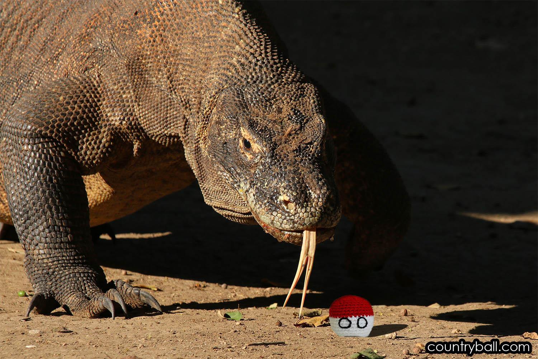 Komodo Dragon tasting Indonesiaball
