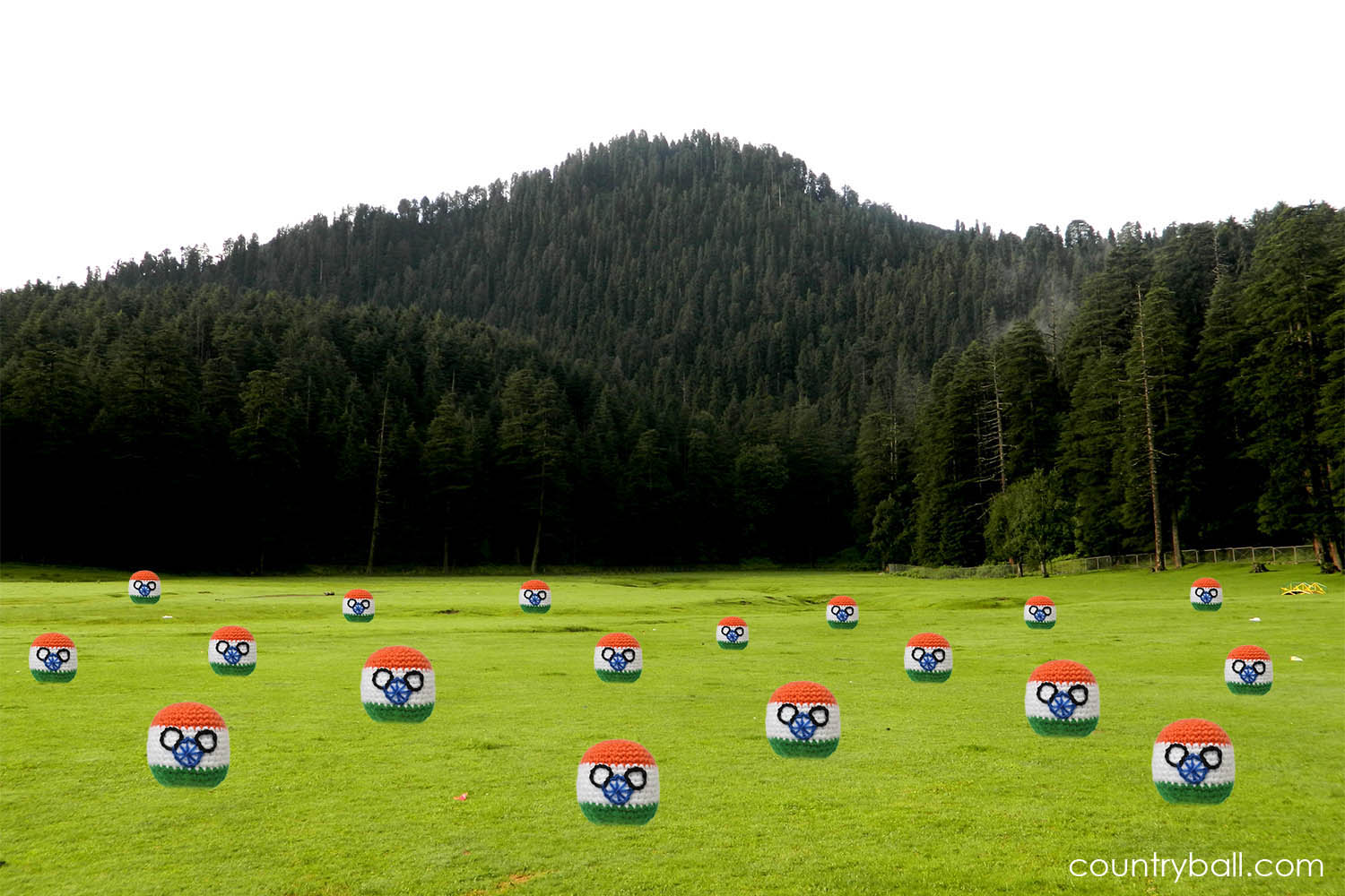 A meadow full with Indiaballs